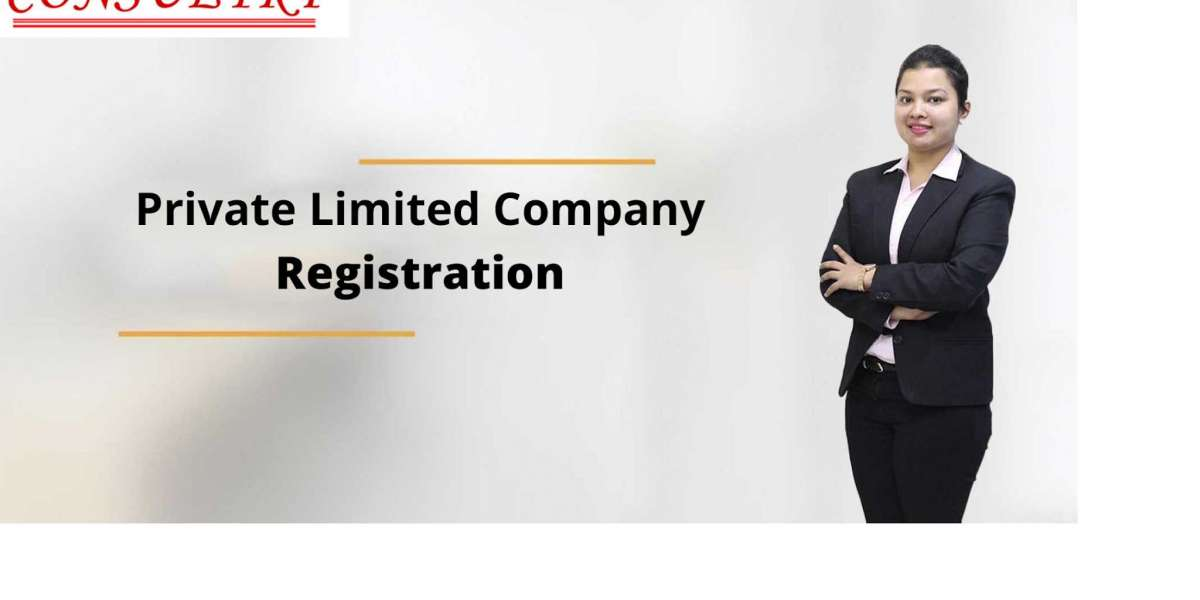 Private Limited Company Registration Bangalore