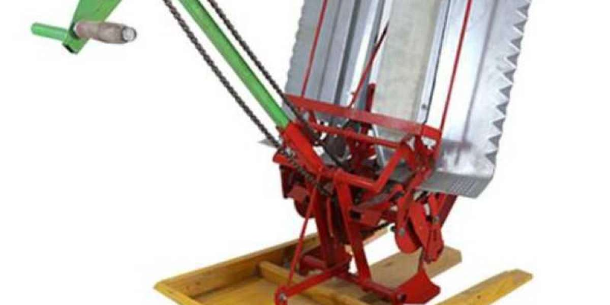 Various Structures Of China Rice Planting Machine